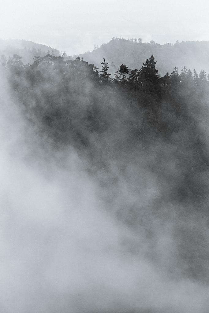 Foggy Ridges